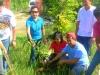 Tree Planting Activity