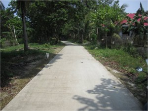 Concreting of Farm to Market Road at Candulang