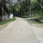 Concreting of Farm to Market Road at Tiguis