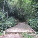 Reinforced Concrete for Mini Bridge at Tiguis