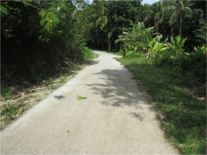 Concereting of Farm to Market Road at Taug